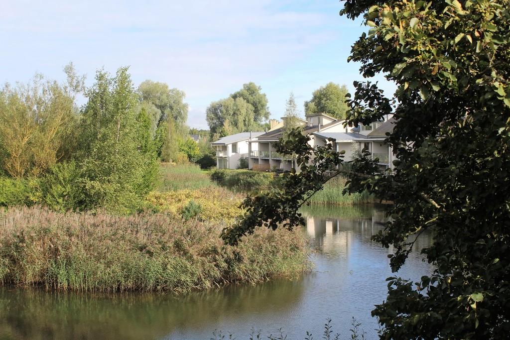 Lower Mill Estate,Local